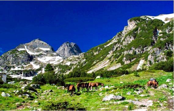 Мальовица - вершина в северо-западной части горы рила