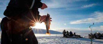 Различные виды мормышенк для рыбалки в первый раз